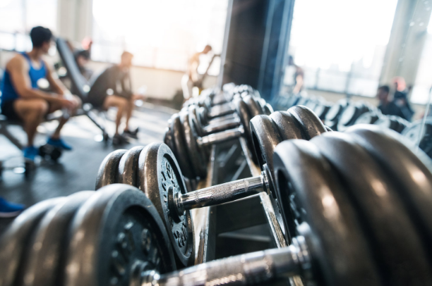 Different Types Of Insurance That Every Fitness Company Needs